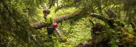 Malin Sahlin en skogshjälte.