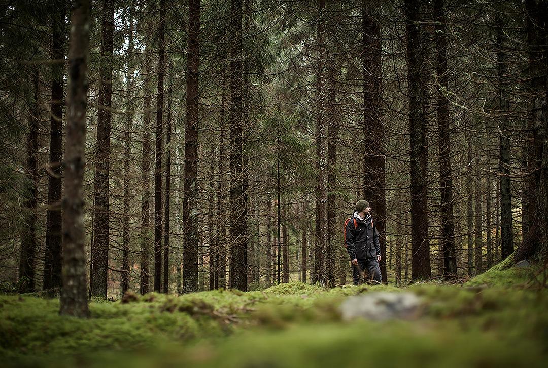 Skogen är det rätta stället. Foto för Fjällräven.